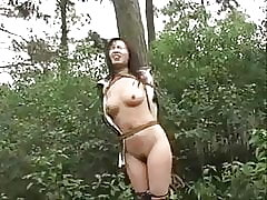 BDSM, Outdoor, Chinese, Bondage